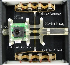 Photo shows the camera positioning system used by researchers Joshua Schultz and Jun Ueda from Georgia Tech's School of Mechanical Engineering.