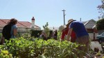 Louisiana Government and GSU Students Team Up to Build a Community Garden
