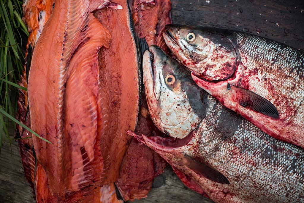 Big fish righteous kill full version precracked