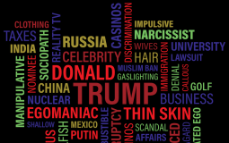 Recent investigations by academic experts further confirm the already-exposed dump of the Trump University.