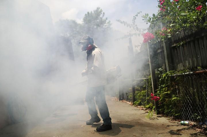 Locally transmitted Zika virus identified in Miami Beach