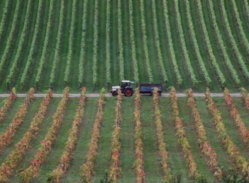 Penn State Farming Academic Reaps SDA Teaching Award