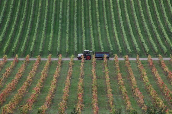 Agriculture from Above