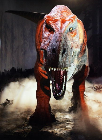 Super-Sensory T-Rex - Photocall