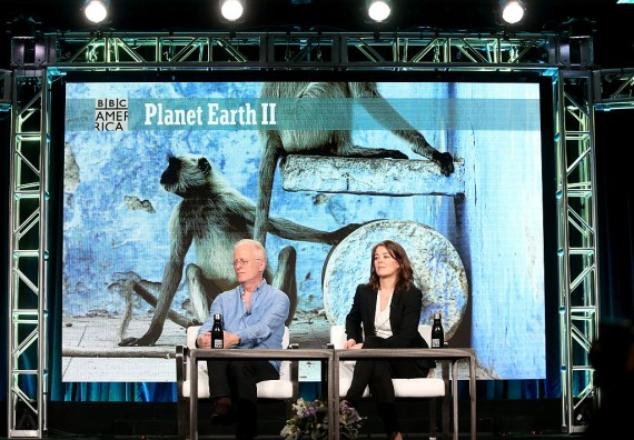 """BBC's """"Into the Animal's World"""" shines light on climate change."""