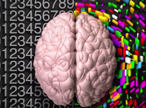 Duke University Study: Creative People Have A Better Connected Brain