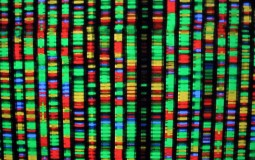 Harvard Scientists Cracked the DNA repairing mystery offering hope to get astronauts to Mars