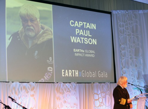 Captain Paul Watson Of Sea Shepherd Reveals Story Behind His Obsession For Whales [VIDEO]